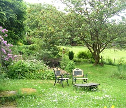 Lake District Cottage with garden dogs welcome