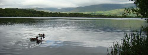 Bassenthwaite Lake District