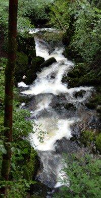 Stock Ghyll Force Waterfall Ambleside