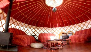 yurt pictures