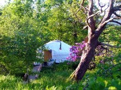 Yurts in the Lake District from Basic to the very Glam - your choice!